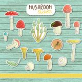 Vector set of colored mushroom stickers on blue wooden background. stock illustration