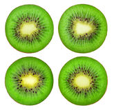 Collection of isolated kiwi fruit slices Royalty Free Stock Photos