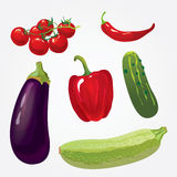 Collection of isolated ripe vegetables Stock Photo