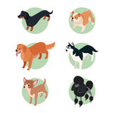 Collection of isometric dogs2 Royalty Free Stock Photography