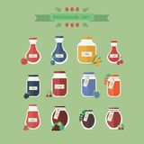 Collection of jars with jam. Vector objects in flat. Set of vector elements for web design. Glass jars of jam with berries royalty free illustration