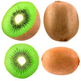 Collection of kiwi isolated on white background Royalty Free Stock Photo