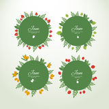Collection labels with fresh berries. Set of vector circle labels with fresh berries. Concept organic product vector illustration