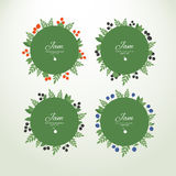 Collection labels with fresh berries. Set of vector circle labels with fresh berries. Concept organic product royalty free illustration