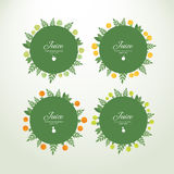 Collection labels with fresh fruits. Set of vector circle labels with fresh fruits. Concept organic product royalty free illustration