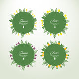 Collection labels with fresh fruits. Set of vector circle labels with fresh fruits. Concept organic product stock illustration