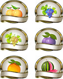 Collection of labels for fruit products royalty free illustration