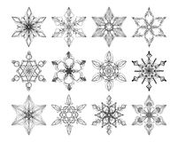 Collection of 12 lacy snowflakes Stock Photo