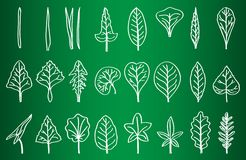 Collection of Leaf Silhouettes on School Board Stock Photo