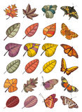 Collection of leaves and butterflies Stock Photography