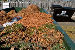 Collection of leaves and grass clippings. Autumn leaves and disposable plastic bags of grass clippings are in a large container  at a collecting station prior to Stock Photography