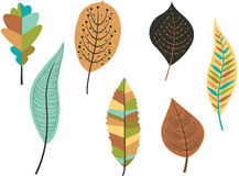 Collection of leaves. Vector Royalty Free Stock Image