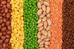 Collection of lentils, peas, beans and corn Royalty Free Stock Images