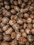 Collection of Leopard Skin Jasper semi precious stones and minerals. LONDON, UK - APRIL 15, 2019: Collection of Leopard Skin Jasper semi precious stones and royalty free stock image