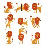 Collection of lion in various poses. Cartoon character of wild African animal. Big strong predator. Zoo theme. Flat Royalty Free Stock Photos