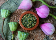Collection lotus flower, seed, tea, healthy food. Collection of lotus, pink lotus flower, green seed, white lotus seed in fresh and dry, herbal tea of this flora Royalty Free Stock Photo