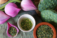 Collection lotus flower, seed, tea, healthy food Stock Images