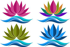 Collection lotus logos. Illustration art of a collection lotus logos with isolated background Royalty Free Stock Photos