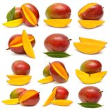 Collection of mango with leaf and slices Stock Photos