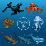 Collection of marine animals. – turtle, seal, octopus, shark, fish on a dark blue background. Card with space for text in the middle Royalty Free Stock Photos