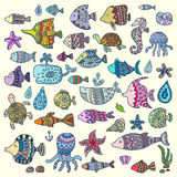 Collection of marine animals, vector illustration Stock Photography