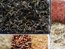 Collection of medicinal herbs, berries and seeds close-up royalty free stock images