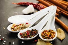 Collection of Mediterranean Spices. On dark rustic background Stock Image
