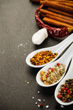 Collection of Mediterranean Spices. On dark rustic background Royalty Free Stock Photography