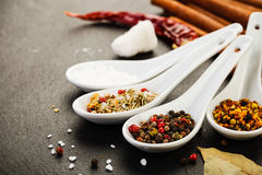 Collection of Mediterranean Spices. On dark rustic background Royalty Free Stock Photo