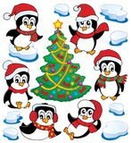 Collection mignonne de pingouins   Image stock