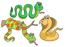 Collection mignonne de serpents