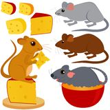 Collection mignonne de vecteur de souris de rat Image stock