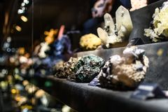 Mineral collection in museum. Collection of minerals exposed in the natural museum of Florence Stock Photography