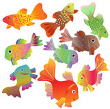 Collection of motley small fishes Royalty Free Stock Photography