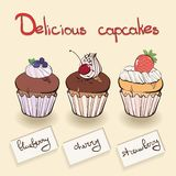 Collection muffin with berries Royalty Free Stock Images