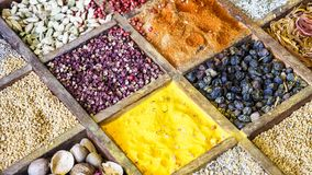 Collection colorful mosaic spices in wooden box. Assortment of condiment cooking ingredient. Seasoning background banner. Collection multicolored mosaic spices royalty free stock photography