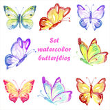 Set multicolored watercolor butterflies Stock Images