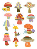 Collection of Mushrooms Stock Image