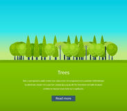 Collection of natural green trees icons set pine Stock Photography