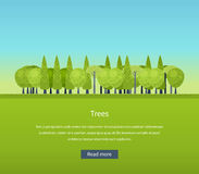 Collection of natural green trees icons set pine Stock Images