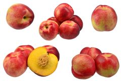 Collection of nectarine fruits Stock Images