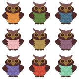 Collection of nice owls Stock Image