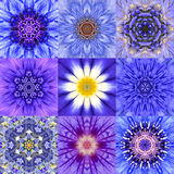 Collection of Nine Blue Concentric Flower Mandalas Kaleidoscope. Collection of Nine Concentric Blue Flower Mandalas. Kaleidoscope Concentric design. Full Flower stock illustration