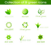 Collection of Nine Green Icons. Nine Green Eco-styled Icons Royalty Free Stock Images