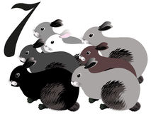 Collection number for kids: animals farm - number seven, rabbits. Royalty Free Stock Image