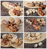 Collection of nut images Stock Image