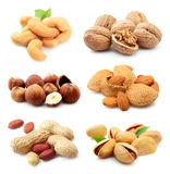 Collection of nuts Royalty Free Stock Images