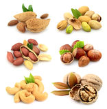 Collection of nuts Royalty Free Stock Photos