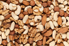 Collection of nuts Royalty Free Stock Photography