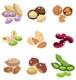 Collection of Nuts and Beans Royalty Free Stock Images